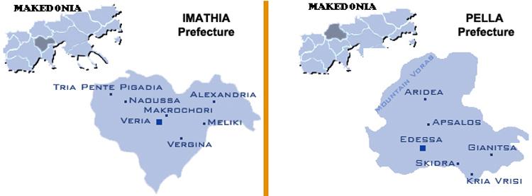 Greek peaches info
