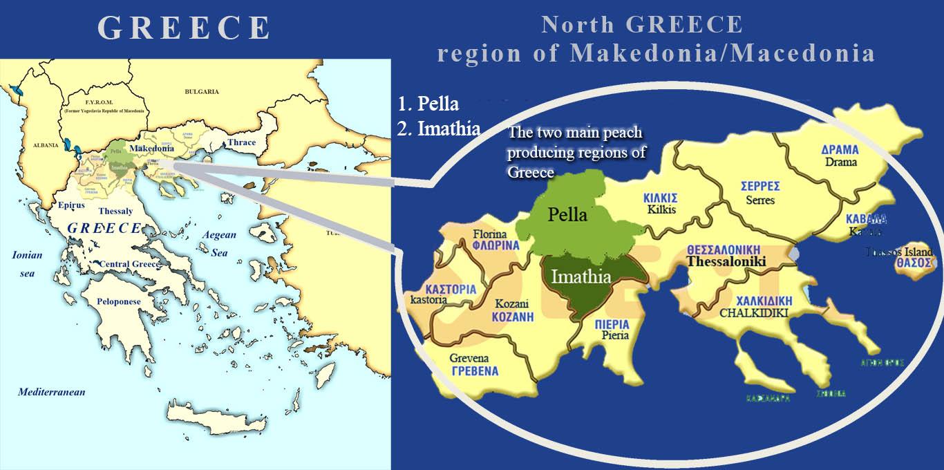 Pella Greece Map.Greek Peaches Info